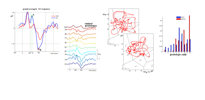 Response Dynamics in Normal and Diseased Brain